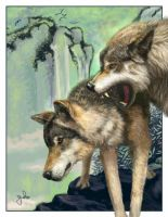 Wolves by oomu
