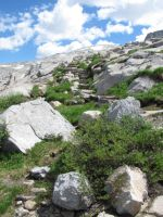 Trail to the top of the pass by NMWoodcarver