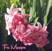 For Masyon by Sisterslaughter165