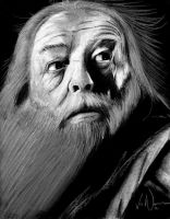 Harry Potter Project: Albus Dumbledore by artbyjoewinkler