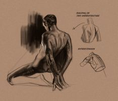 Quick Back Study by BADARTHELPCENTER