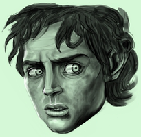 Frodo Baggins by tree27