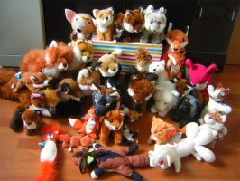 Poonies Fox Plush Collection by PoonieFox