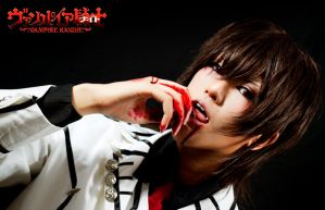 Vampire Knight: Blood Lust by g-Kie