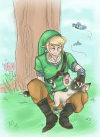Skyward Link by robotRainbows