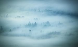 The Blanketed Valley by Jacob-Routzahn