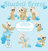 Bluebell Breeze Reference Sheet 2.0 by princess-madeleine