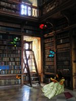 Library by Starrianne
