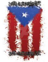 Boricua Pride by Ghost482