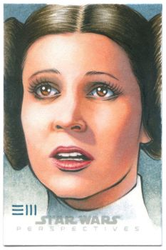 Princess Leia - Star Wars Perspectives AP by Erik-Maell