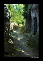 Path through the rocks by grugster