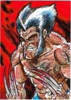 40 Wolverine by SirGryphon