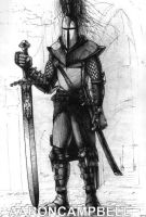 Paladin by littleac