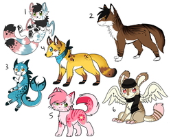 Unsold Adoptable Batch by Darkaiya