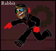 Muse Rabbit by visdviking