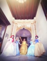 Disney Classic Princesses : hello ~ by oruntia