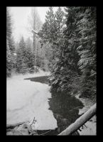Fitzsimmons Creek 2, Whistler, BC by DTherien