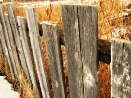 Prairie Fences of Another Type by Inkfairy2535