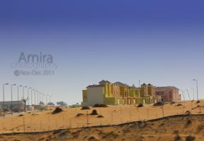 Villas in UAE desert by amirajuli