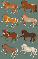 One left - points adopts by BH-Stables