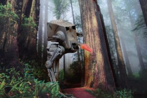 Endor hunting by Silesky