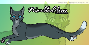 NimbleClaw Character Reference by iJemz