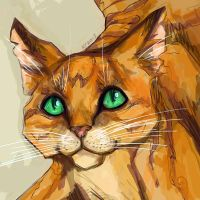 Firestar by Ospreyghost13