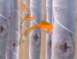 Fish forest background by loenabelle