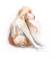 Watercolor Baboon Life Study by SundayPrism