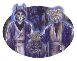 The Force Will Be With You Always by wielderofthewind