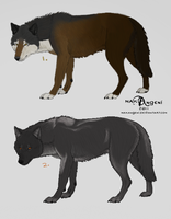 CLOSED ~ 2 Inexpensive Realistic Canine Adoptables by Animal-Canine-Adopts