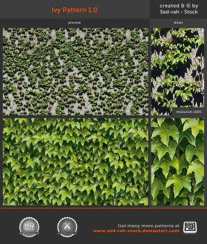 Ivy Pattern 1.0 by Sed-rah-Stock