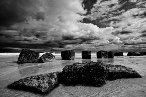 Defences by CharmingPhotography