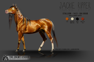 JACKIE RIPPER - character sheet by THE--ENEMY