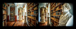 The Library of Anna-Amalia 4 by calimer00