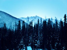Manning Park by Gavin-D