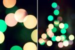 Juicy Bokeh by smanimagery