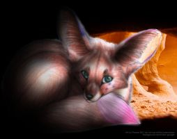 Hideout for the Fennec Fox by PoonieFox