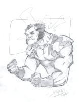 A quickie with Wolverine by bathill8
