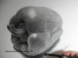 Realistic Bell-Pepper Drawing Sketch 3 by kakosuranosx