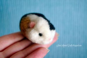 Guinea pig baby by SaniAmaniCrafts