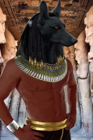 Anubis the Underworld traveller