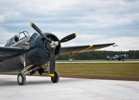 2012 Warbird Fly-In 011 by Stig2112