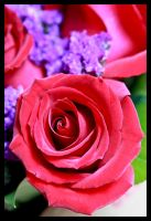 Bouquet of Love by tCentric-media