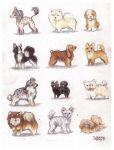 Some dogs by veeae