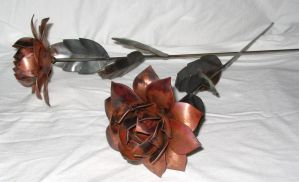 Copper roses by Twistedbry