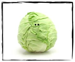 Cabbage in 3D by Wiggagram