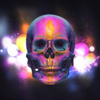 Skull Study 2 by PoorGent