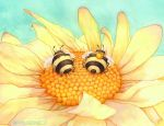 Bee Sweet by FALSONIC