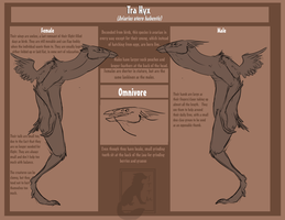 Tra Hyx Species Reference. by SlaveToTheMocha